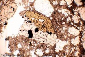 Cummingtonite (vu au microscope polarisant)