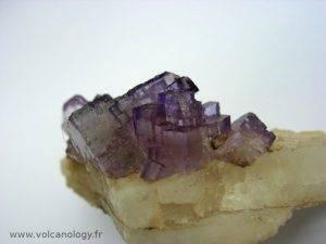 Fluorine violette sur barytine de Musquiz (Mexique)