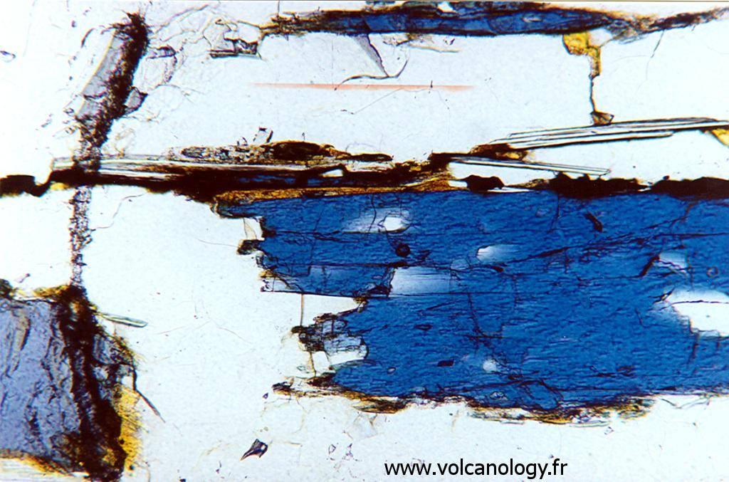 Amphibole bleue variété Glaucophane (vue au microscope polarisant)